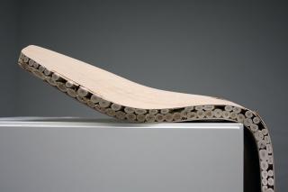 Salix Gelege Weide-Furnier Prototyp