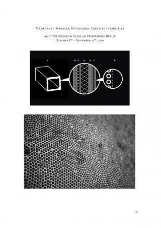 Preprint420_Max_Planck_Institut_Intro_04.jpg