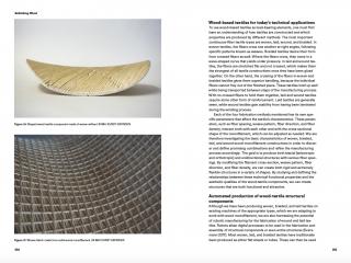 Rethinking-Wood_Birkhäuser_Klussmann_Silbermann_e